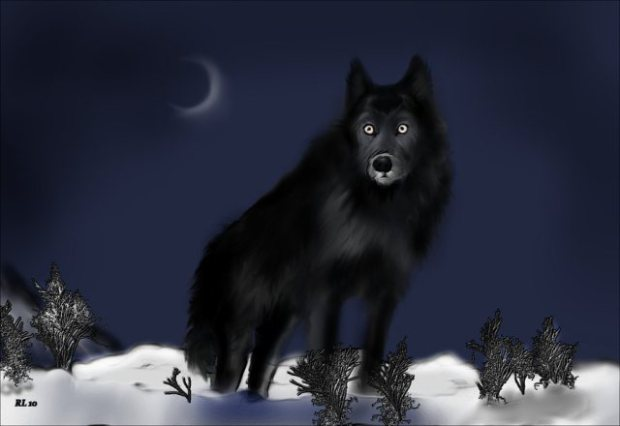 """""""...Lonely is the night when you hear the Ghost Wolf call!"""""""